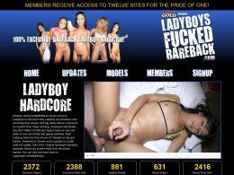 Ladyboys Fucked Bareback